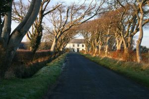 photo of road to Hartlaw Farm